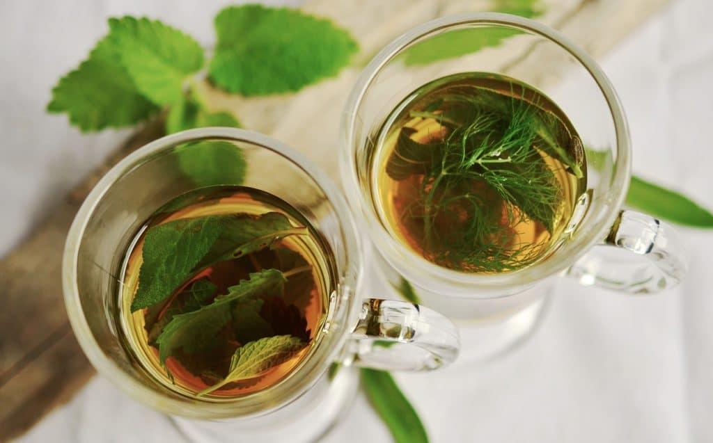 Resveratrol antioxidant